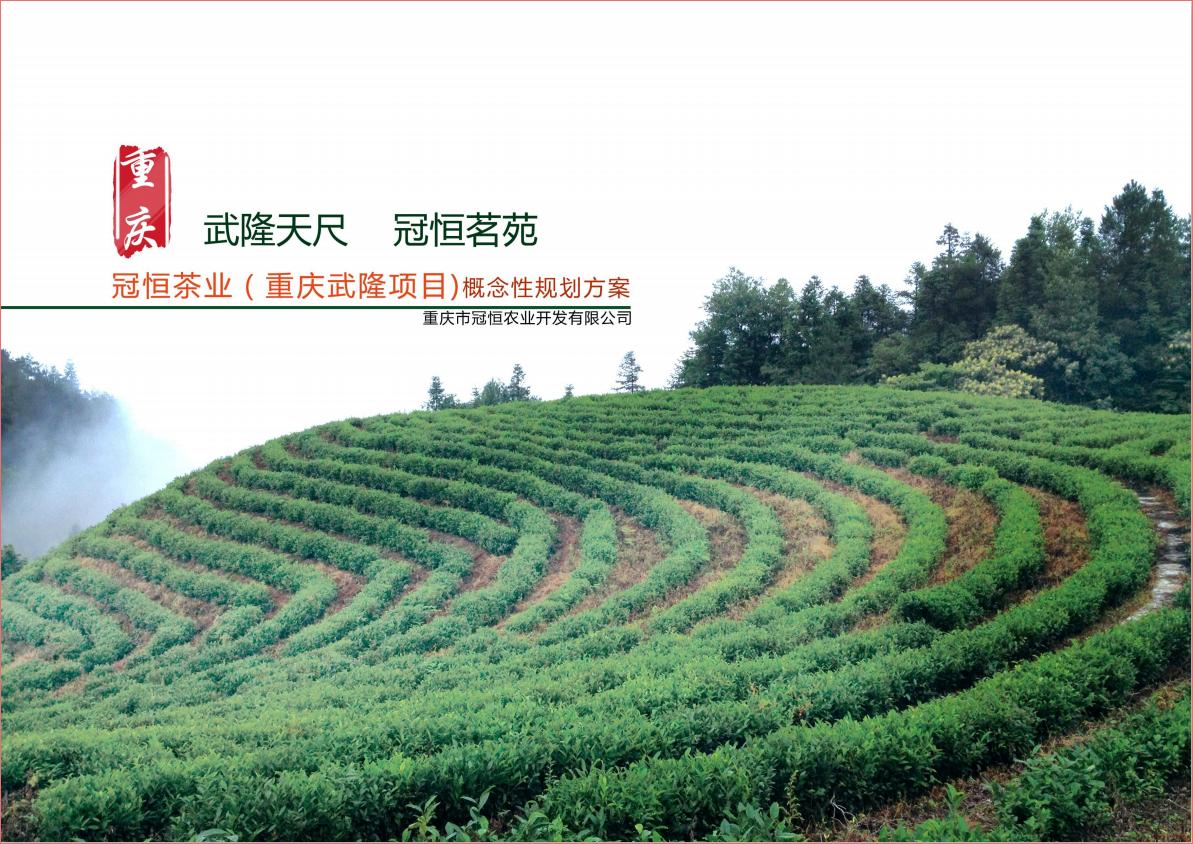 重庆冠恒项目规划概念